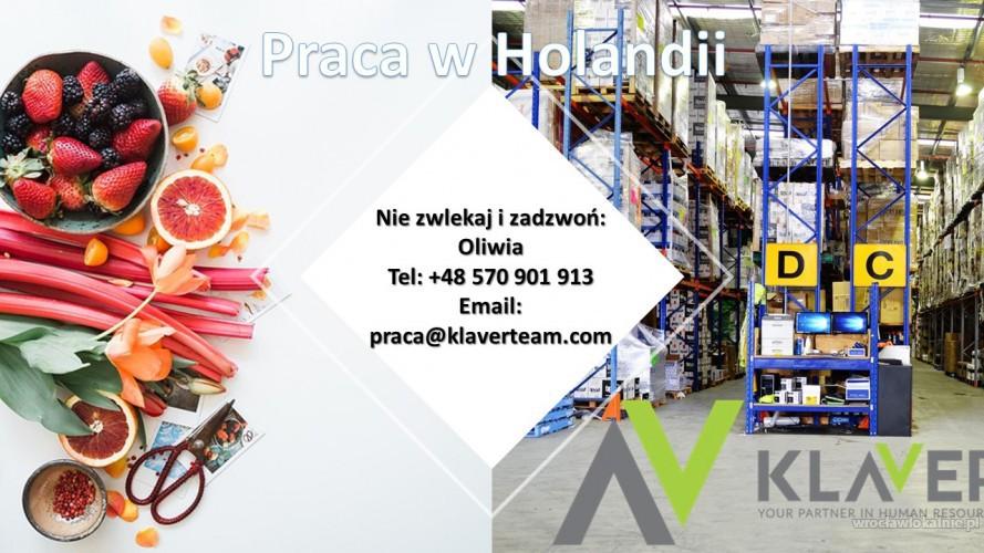 Pracuj na produkcji w Holandii od zaraz !EXTRA BONUSY!